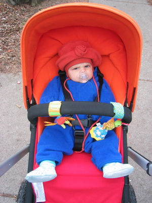 Zoe in the stroller and snowsuit